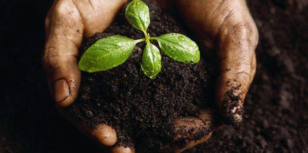 people 4 soil