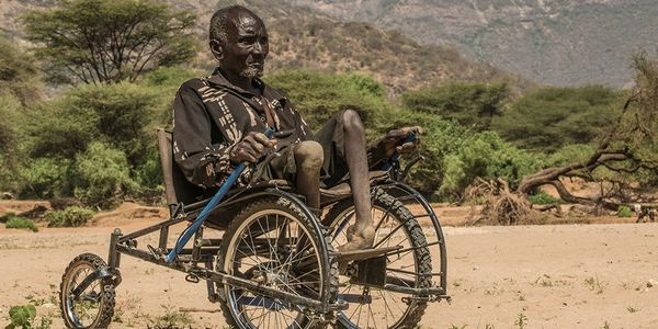 safari seat sedie a rotelle bici