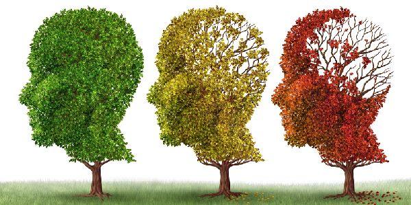 Alzheimer proteina