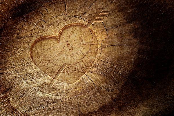 come coltivare amore
