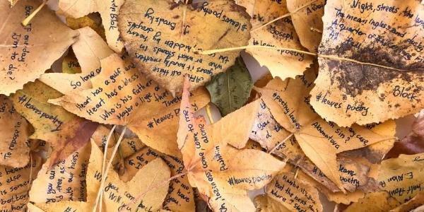 poesie_sulle_foglie