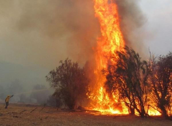 incendi patagonia cover