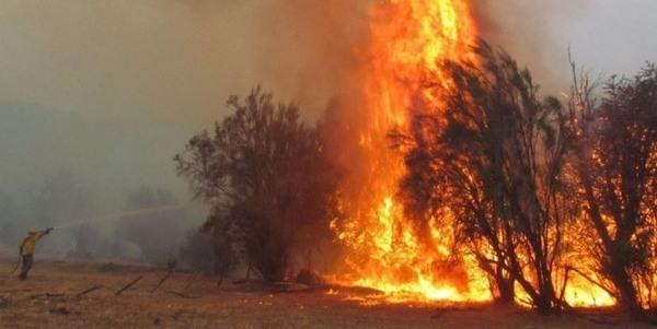 patagonia incendi
