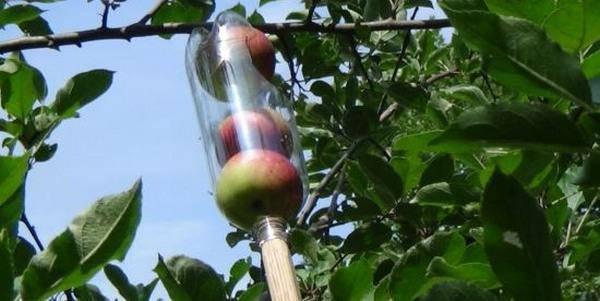 raccoglitore-frutta-fai-da-te