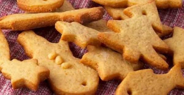 biscotti integrali zenzero
