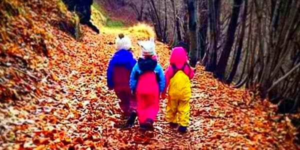 bosco dei piccoli