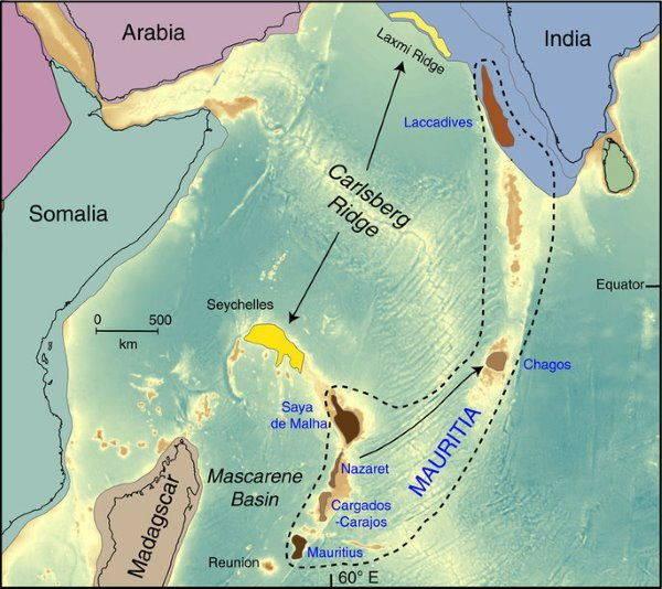continente nature