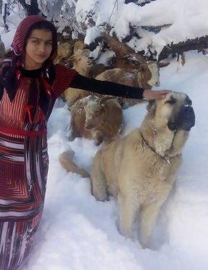 ragazza turca 4