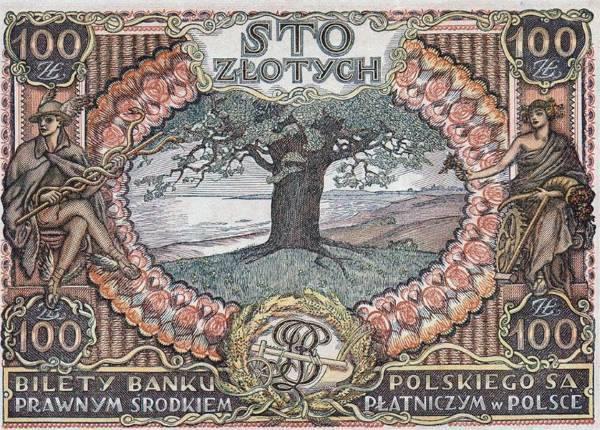 albero europeo premio4