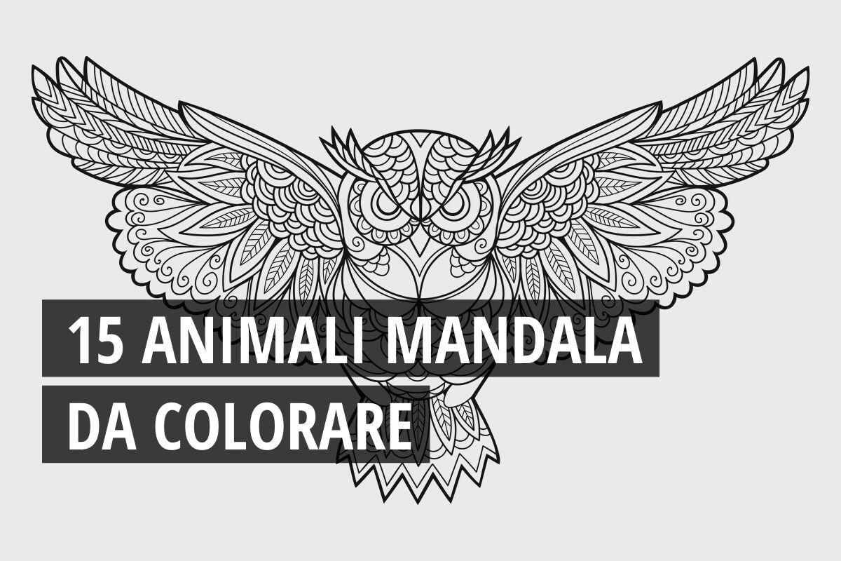 Mandala 15 Animali Da Colorare Scarica Gratis Greenme