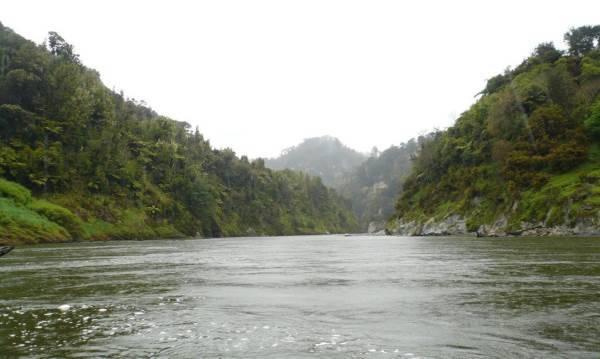 fiume whanganui1