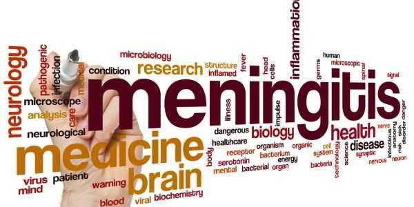meningite-ceppi