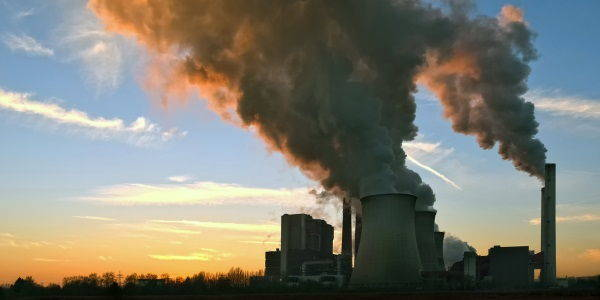 carbone killer2