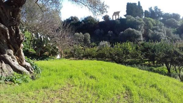 giardino kolymbethra