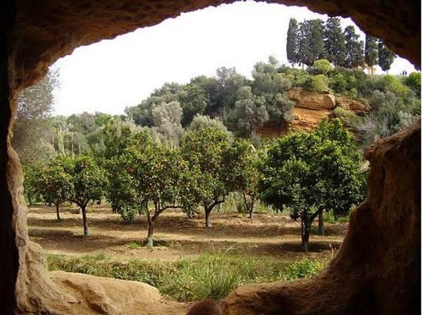giardino kolymbethra6