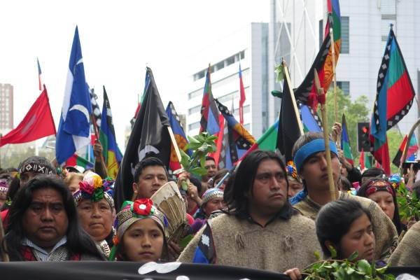 indigeni mapuche1
