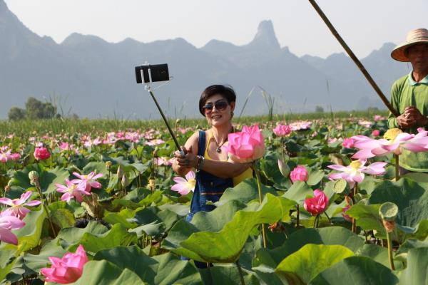 fioriloto thai1