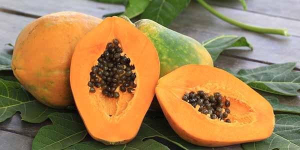 papaya cover