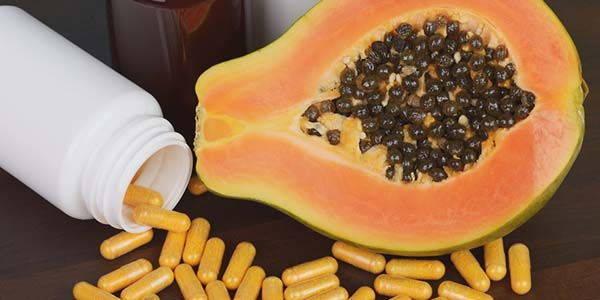 papaya-fermentata
