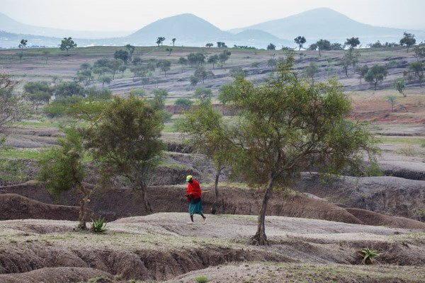 suolo tanzania17