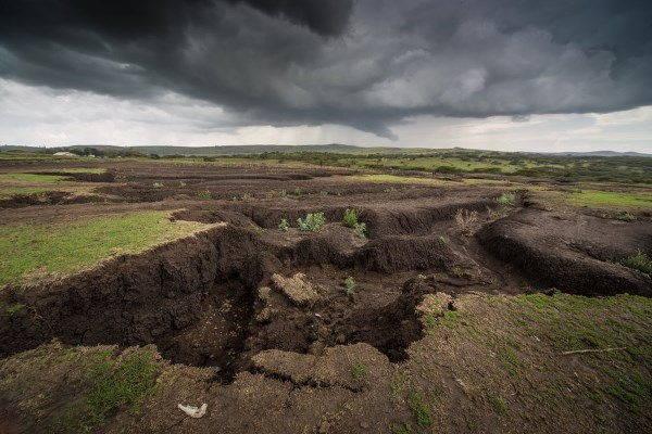 suolo tanzania2