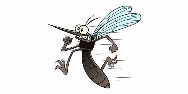 zanzare-rimedi