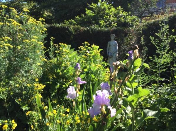 giardino delle piante parigi1