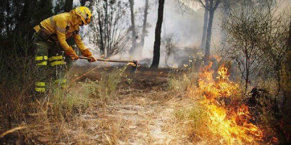 Incendio parco spagna