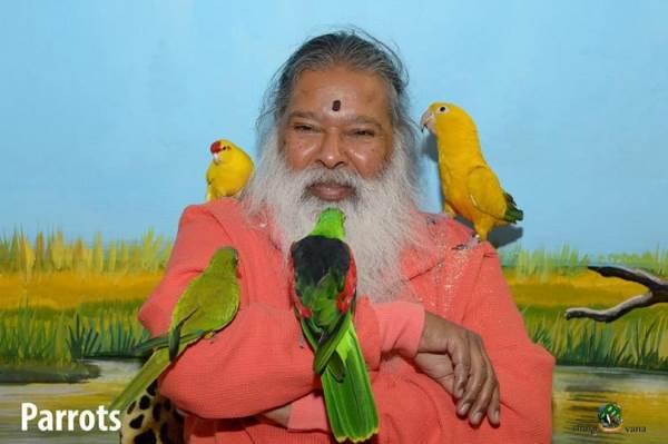 uomo che salva uccelli