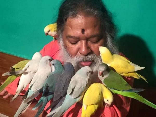uomo che salva uccelli2