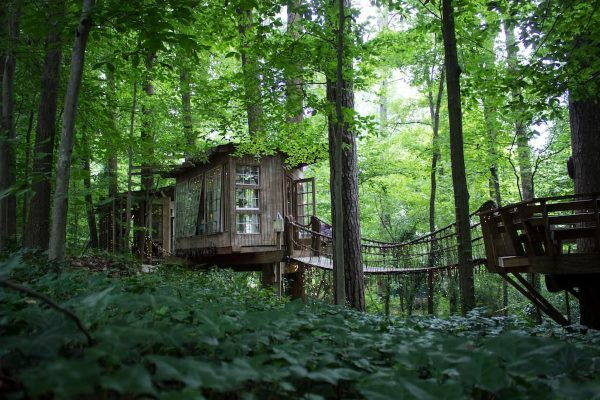 airbnb treehouse9