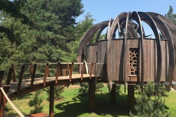 quiet treehouse4