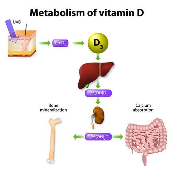 vitaminad infografica