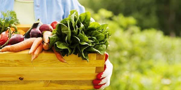 biologico-vantaggi-salute