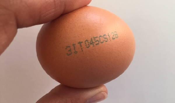 codice uovo ger