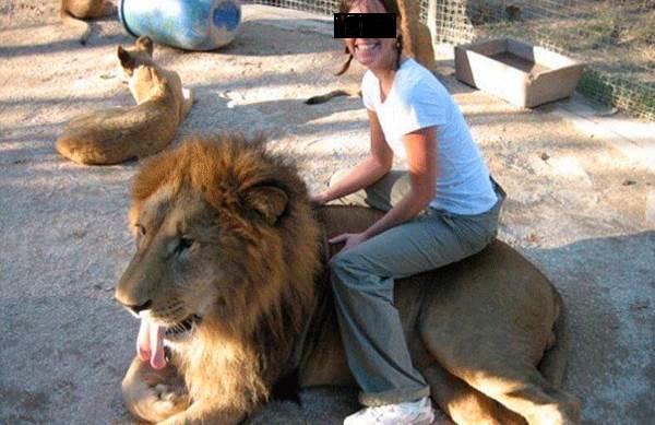 animali drogati zoo
