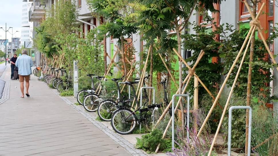 cykelehuset bycicle