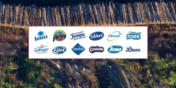 Deforestazione marchi Greenpeace