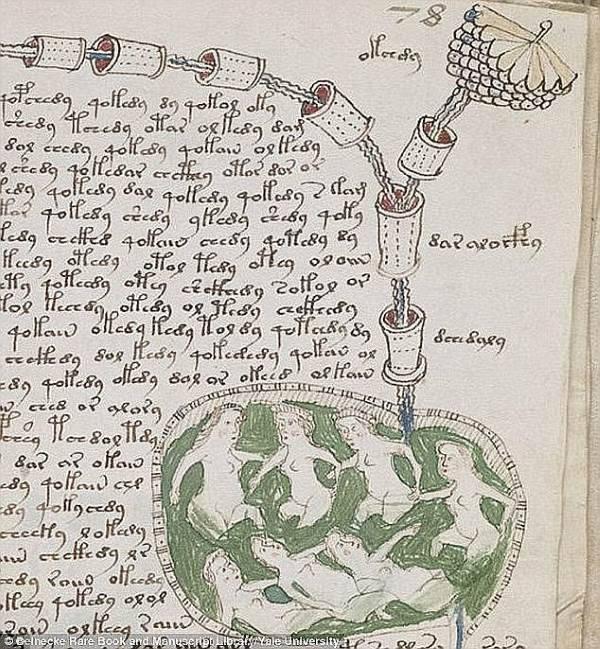 manoscritto voynich1