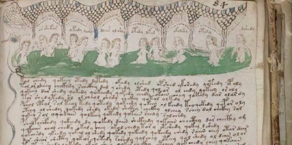 manoscritto_voynich_cover