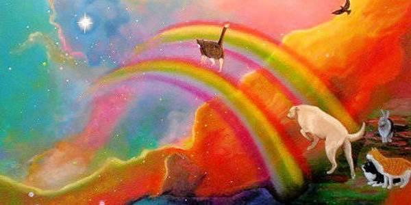 ponte_arcobaleno