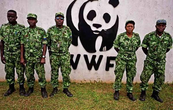 popoli indigeni accuse wwf1