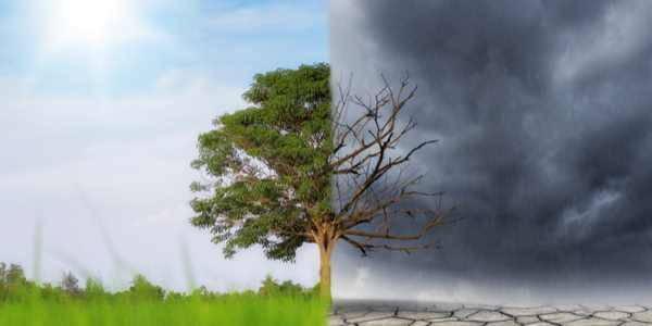 paesi cambiamenti climatici