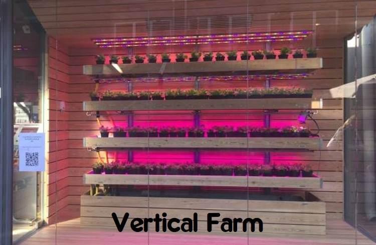 vertical farm padova