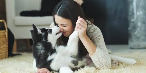 cani-permesso