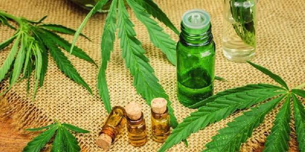 Cannabis terapeutica legge