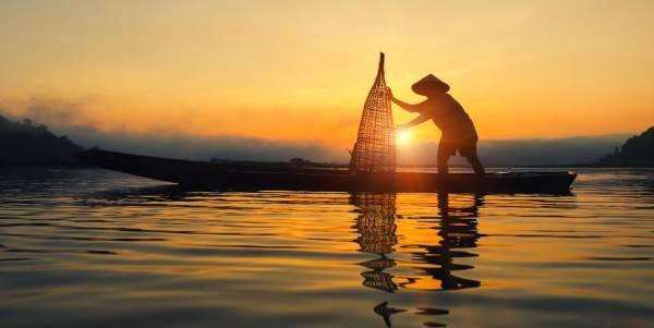 diga-cambogia