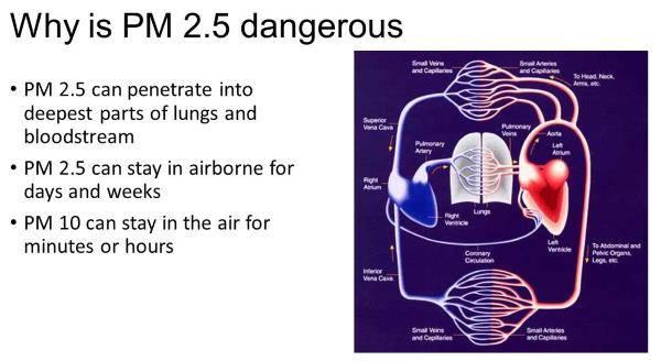 pm2.5 grafico