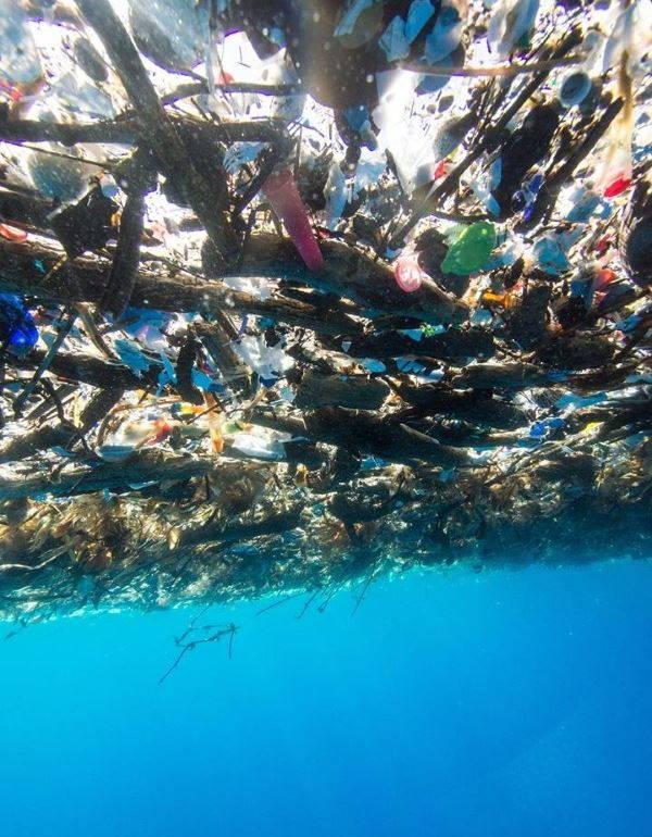 spazzatura caraibi3
