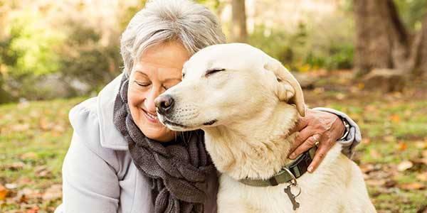 cane-longevità
